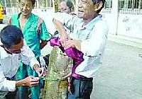 汉阳钓友在长江钓起56斤大鲶鱼